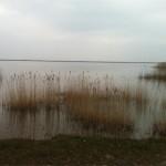 Photo 2013.04.01. 14 36 22 (HDR)